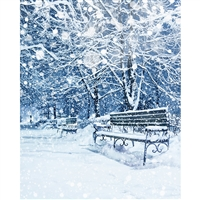 Frozen Bench Printed Backdrop