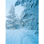Snowy Tree Path Printed Backdrop