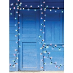Christmas Lit Door Backdrop
