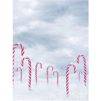 Candy Cane Valley Backdrop