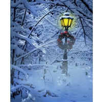 Holiday Lamp Post Printed Backdrop
