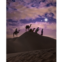 Three Wise Men Printed Backdrop