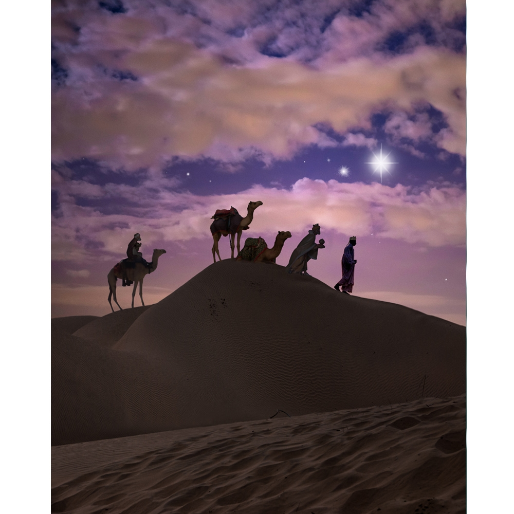 Three Wise Men Printed Backdrop Backdrop Express
