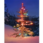 Lonely Christmas Tree Printed Backdrop