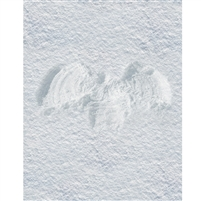 Snow Angel Printed Backdrop