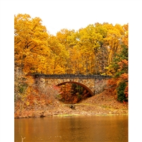 Bridge in Autumn Forest Printed Backdrop