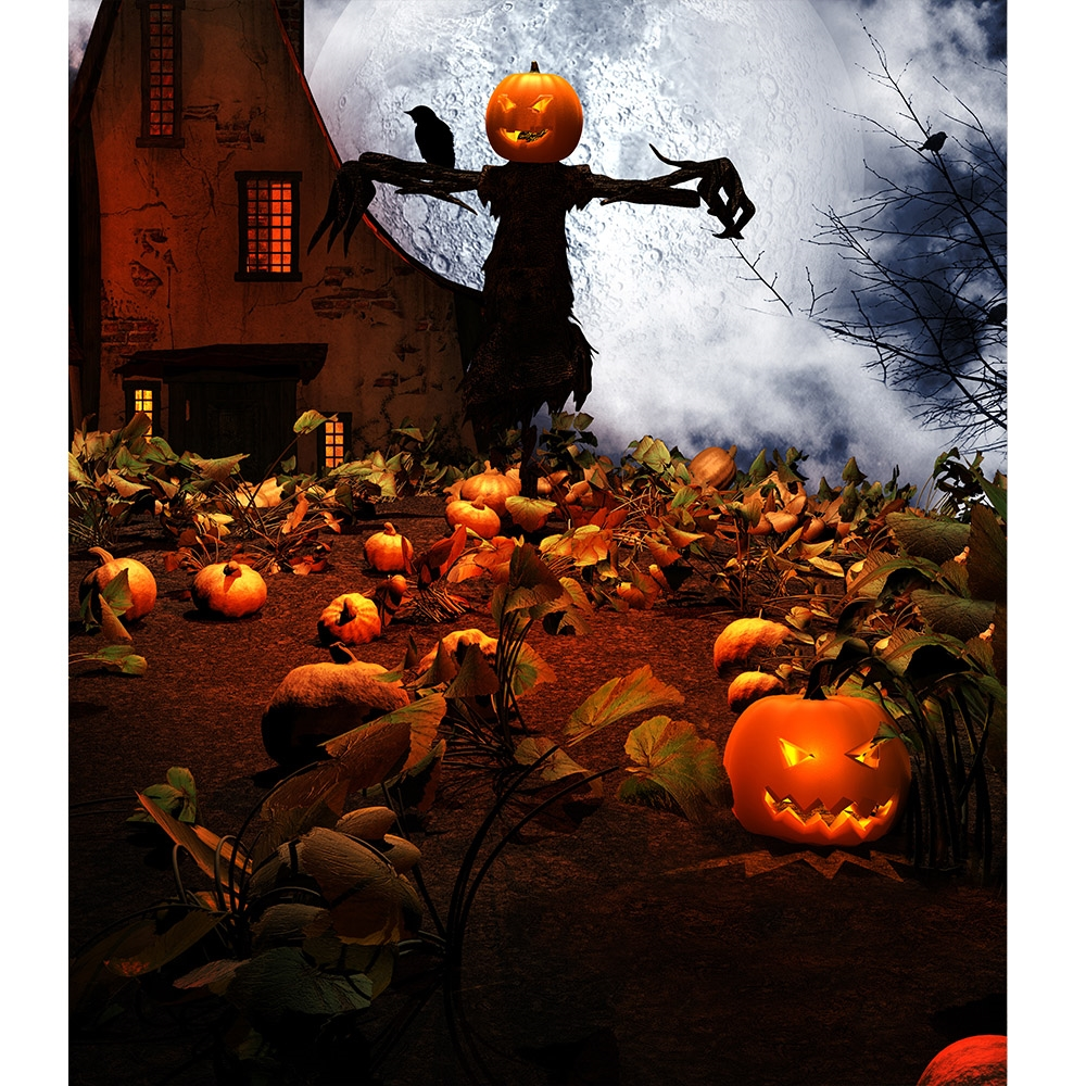 Haunted Pumpkin Patch Printed Backdrop Backdrop Express