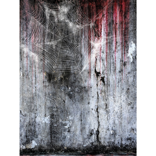 Spider Web Grunge Printed Backdrop