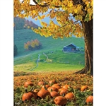 Autumn Farm Printed Backdrop