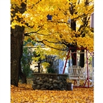 Autumn Backyard Printed Backdrop