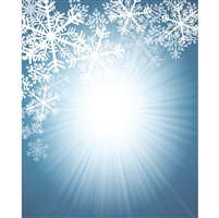Bright Snowflakes Printed Backdrop