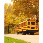 School Bus Printed Backdrop