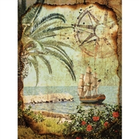Pirate Compass Printed Backdrop