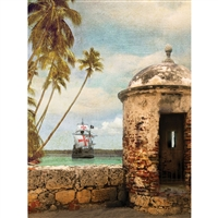 Pirate Port Printed Backdrop