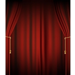 Theater Curtain Printed Backdrop