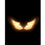 Phoenix Wings Printed Backdrop