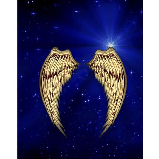 Golden Angel Wings Printed Backdrop Backdrop Express