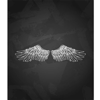 Falcon Wings Printed Backdrop