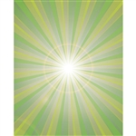 Point of Light Printed Backdrop