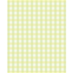 Green & Yellow Plaid Printed Backdrop