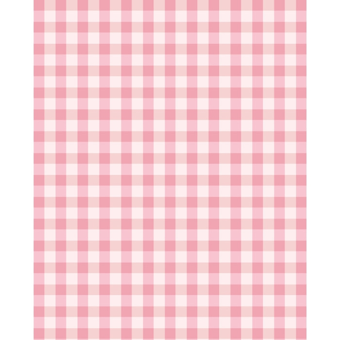 Light Pink Plaid Printed Backdrop Backdrop Express