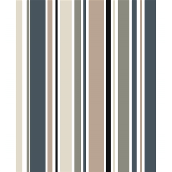 Earthtone Striped Printed Backdrop