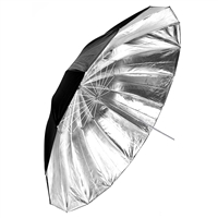 Silver / Black Umbrella