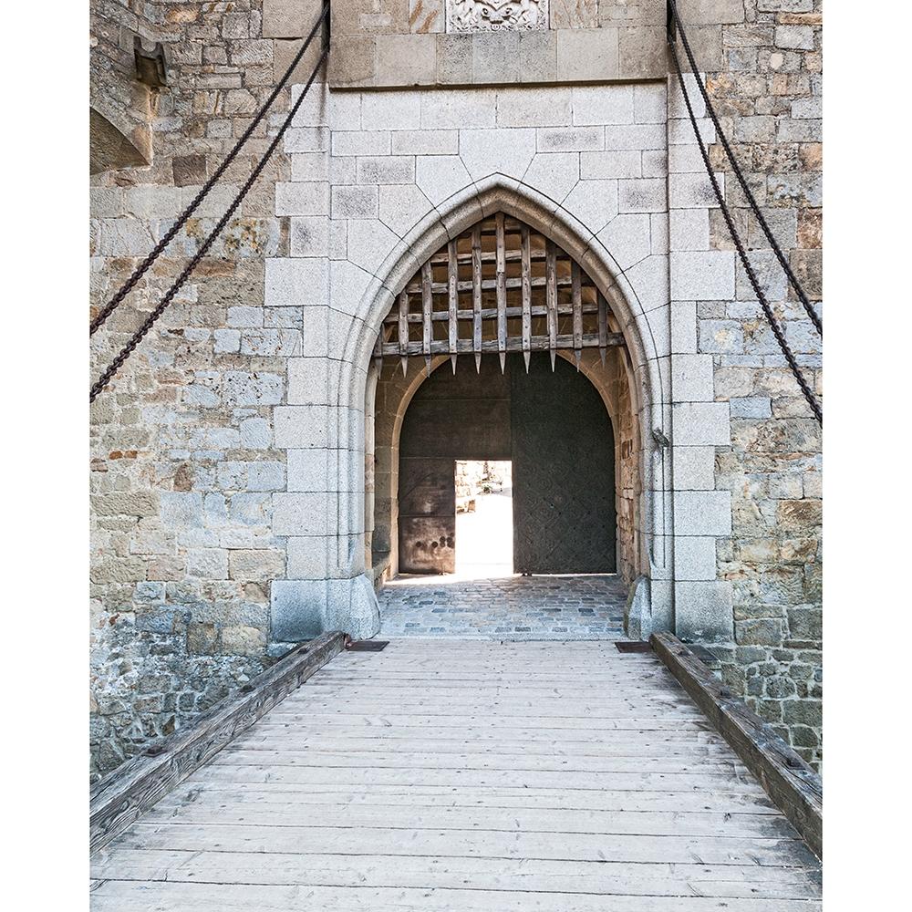 Castle Drawbridge Printed Backdrop Backdrop Express