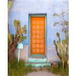 Southwestern Door Printed Backdrop