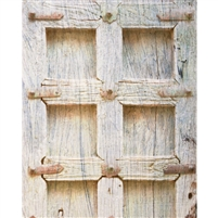Old Wooden Door Printed Backdrop