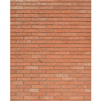 Red Brick Wall Printed Backdrop