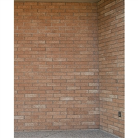 Brick Corner Printed Backdrop