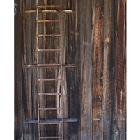 Rusty Ladder Printed Backdrop