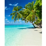 Serene Beach Scenic Printed Backdrop