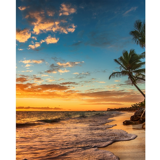 Sunset On The Beach Printed Backdrop Backdrop Express