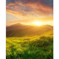 Mountain Scenery Printed Backdrop