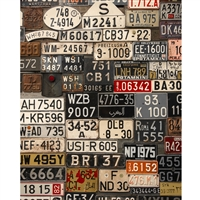 Foreign License Plates Printed Backdrop