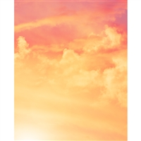 Tropical Sunset Printed Backdrop