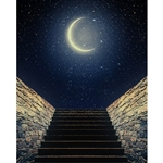 Midnight Sky Printed Backdrop