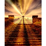 Heavenly Gates Printed Backdrop