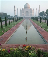 Taj Mahal Scenic Printed Backdrop