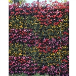 Floral Wall Printed Backdrop