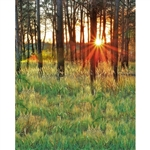 Tall Grass Printed Backdrop