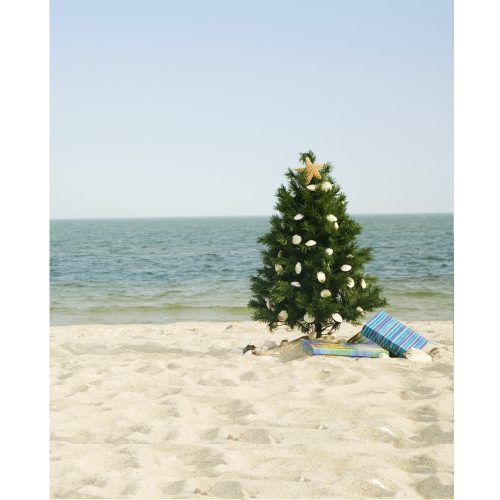 christmas on the beach printed backdrop