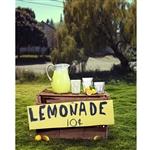 Summer Lemonade Stand Printed Backdrop