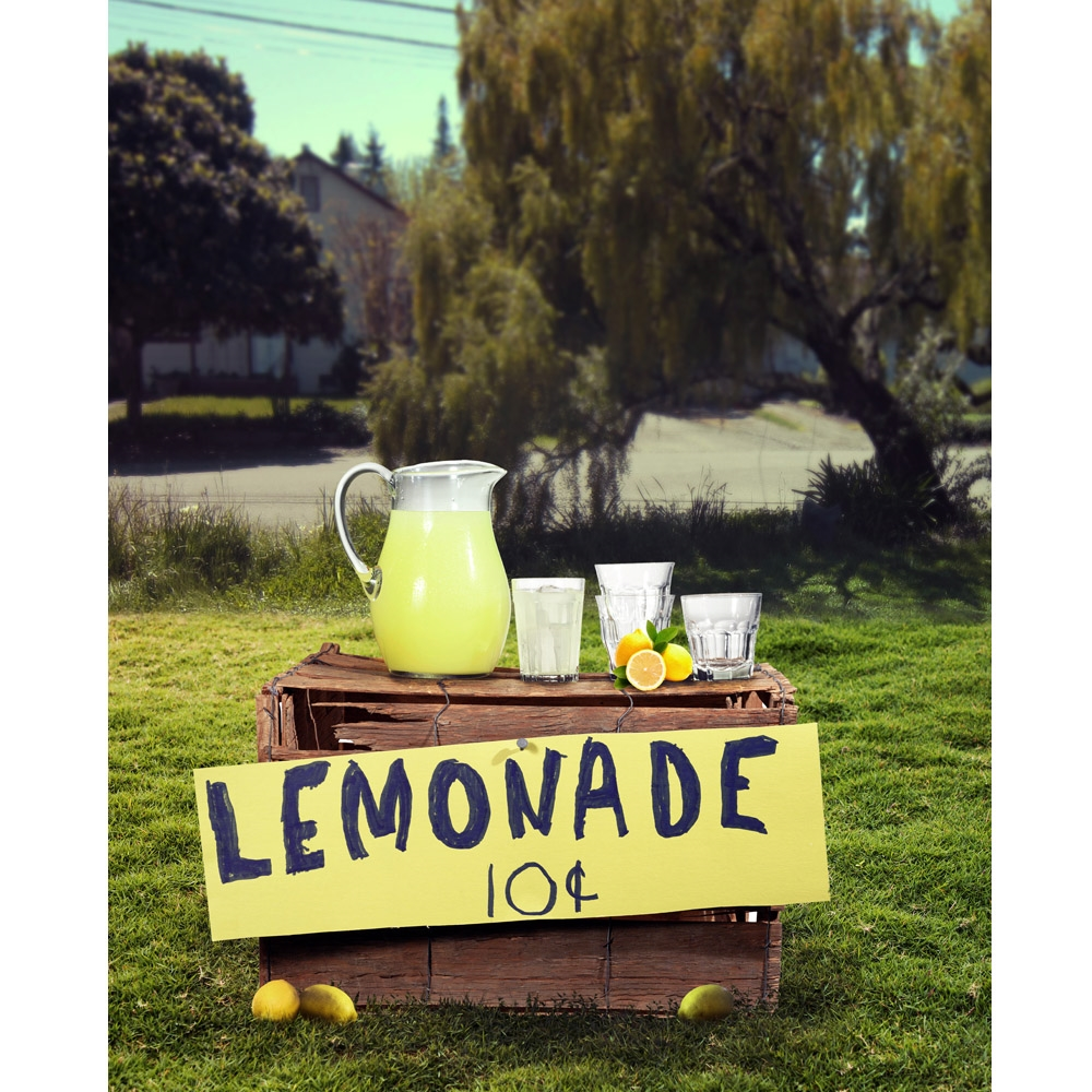 Summer Lemonade Stand Printed Backdrop Backdrop Express