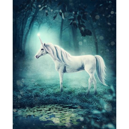 Mystical Unicorn Printed Backdrop Backdrop Express