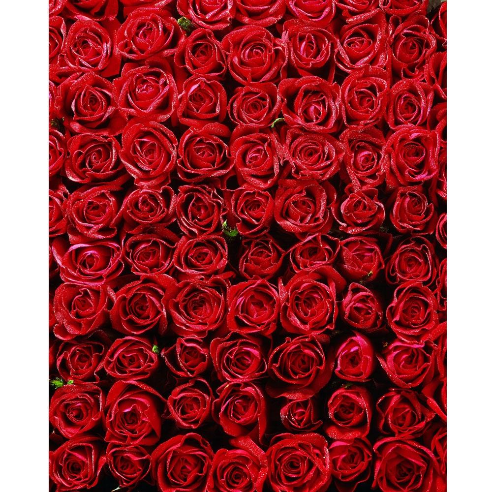 Bed Of Roses Printed Backdrop Backdrop Express